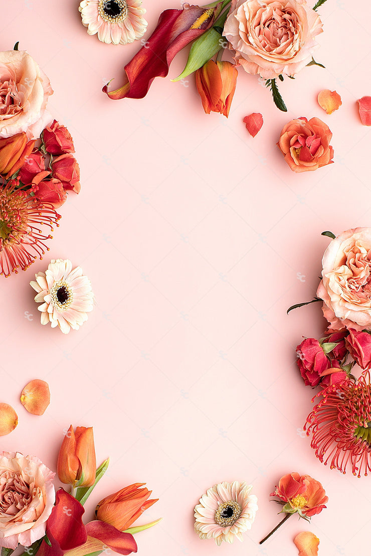 This image contains a vibrant mix of stunning bright pink florals on a light pink background.