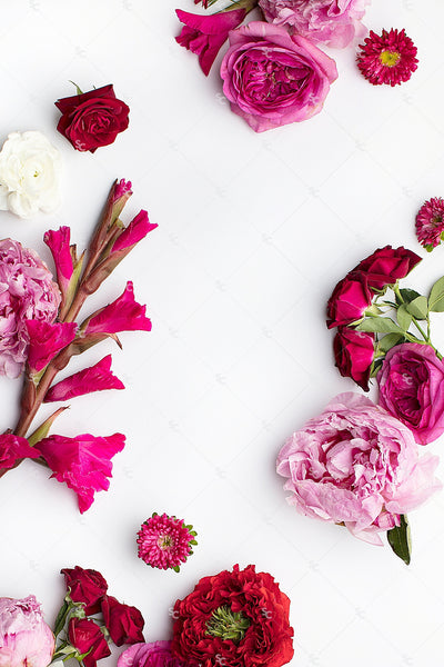 This image contains a vibrant mix of stunning bright pink and purple florals on a white background.