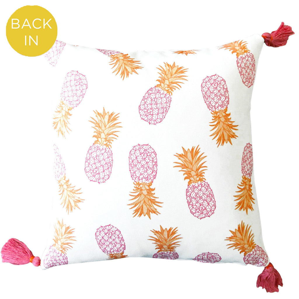 Fine Cell Work Outdoor Pineapple Tassel Cushion Pink and Orange