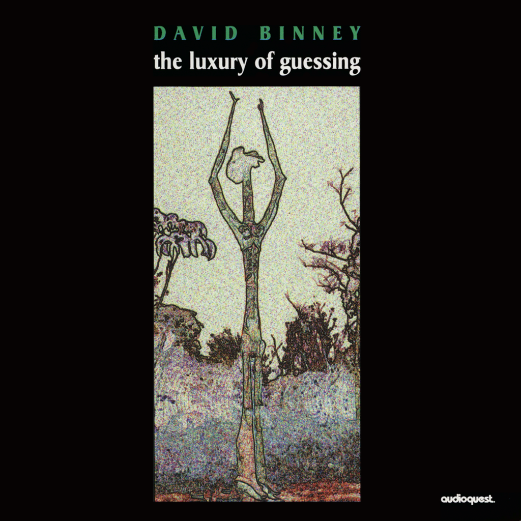 David Binney - The Luxury of Guessing