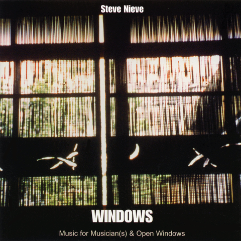 Steve Nieve - Windows