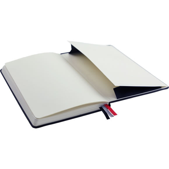 BASICS Notebook
