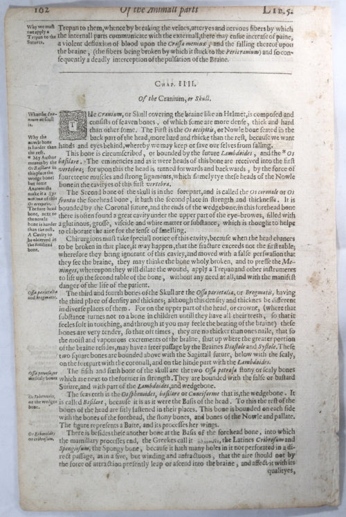 1634 four pages from Thomas Johnson's book on Surgery #1