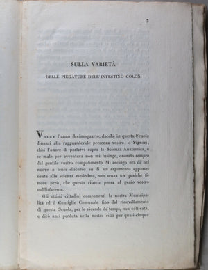 1817 Italian medical pamphlet, Monterossi 'Variety of folds in colon'