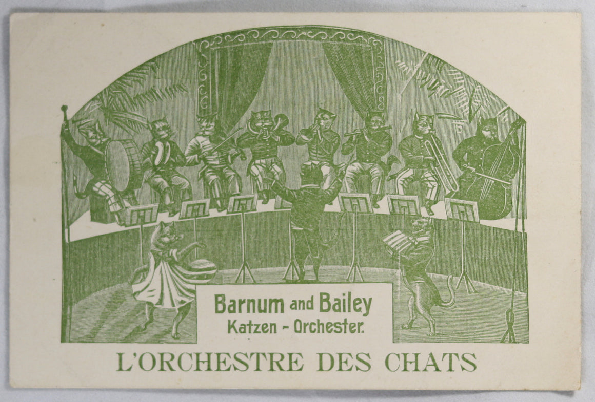 @1900 Barnum and Bailey 'Cat Orchestra' postcard (German/French)