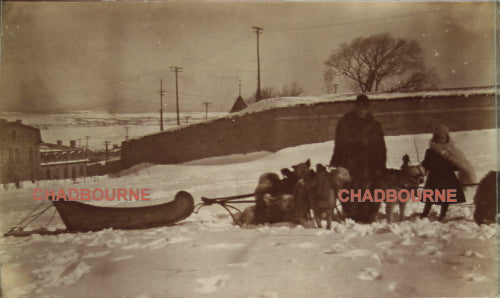 1901 set of three Newfoundland outdoor winter pictures (dog sled)