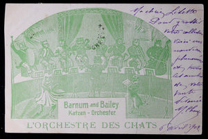 1902 Barnum and Bailey 'Cat Orchestra' postcard (German/French)