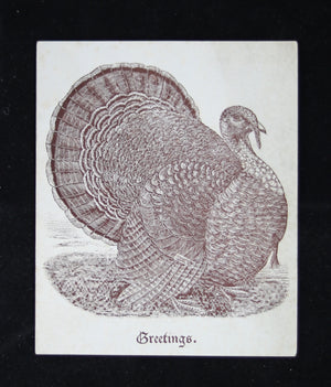 1904 Turkey song card