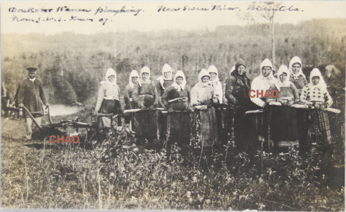 1907 RPPC photo Doukhobor women pulling a plough, Saskatchewan Canada