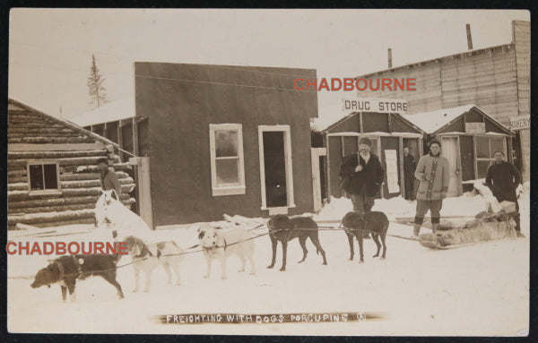 1911 photo postcard of dogsled team, Porcupine Ontario