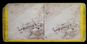 Civil War stereoscopic photo of dead rebel Soldier in the Trenches of Fort Mahone April 3rd 1865