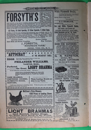 February 1896 American Poultry Journal