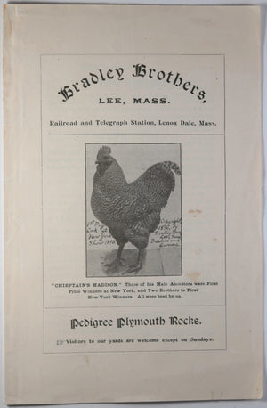 Pedigree Plymouth Rocks (Roosters) advertising flyer 1897