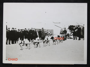 Press photo dog sled used for mail transport Canada 1930s