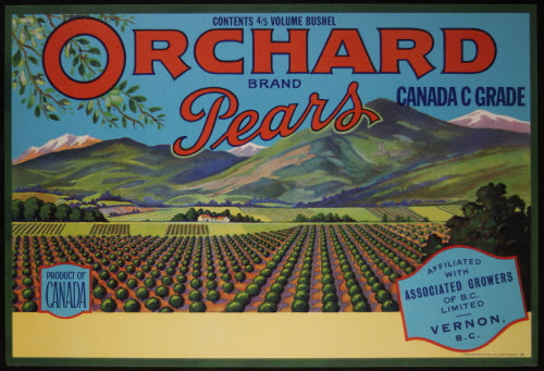 Vintage pear crate label for Orchard Pears, Vernon B.C
