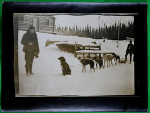 Vintage photo of dog sled team Northern Ontario @1920s