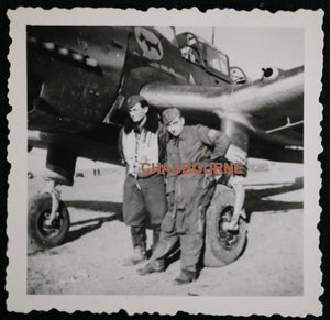 WW2 Luftwaffe set of 2 photos of fighter plane with terrier on fuselage