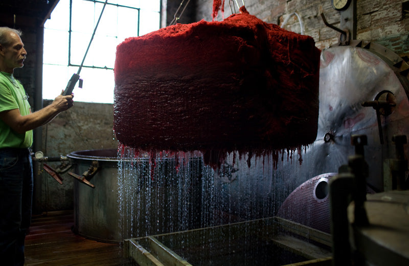 Dan the dye man pulling a wool cake out of a vat of red dye