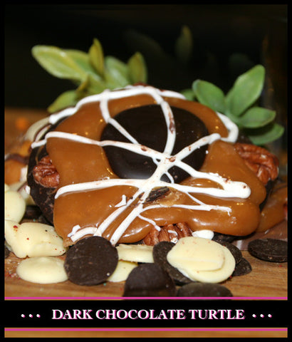 Dark Chocolate Turtle
