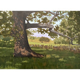 Landscape with large sycamore in the foreground by Kathy Chumley at Cottage Curator - Sperryville VA Art Gallery