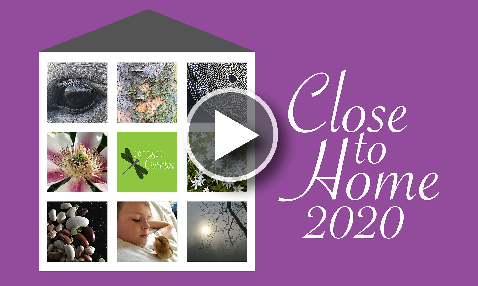 Close To Home 2020 - Online Photo Exhibition
