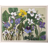 Framed painting of purple yellow and white violets by Frances Coates at Cottage Curator