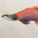 Detail of watercolor painting of pink salmon by Janet Brome at Cottage Curator art gallery Sperryville VA