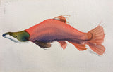 Watercolor painting of pink salmon by Janet Brome at Cottage Curator art gallery Sperryville VA