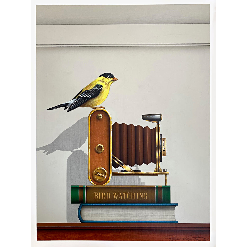 "Painting of a goldfinch sitting atop an old-fashioned camera on top of a two books - one that says ""Bird Watching"" by James Carter at Cottage Curator - Sperryville VA Art Gallery"