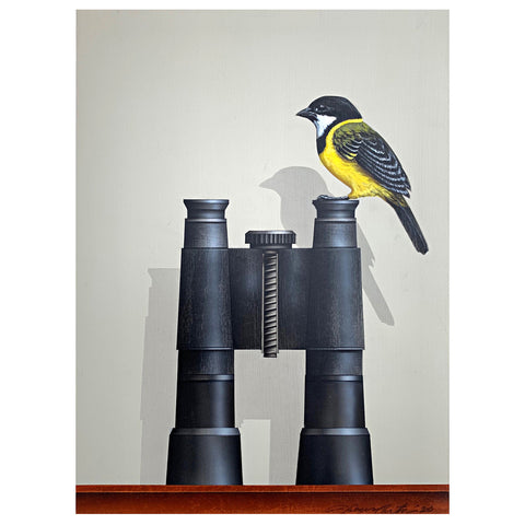 Bird Watching (Golden Whistler)