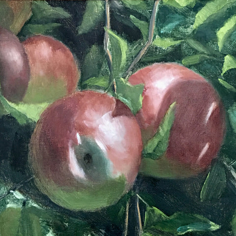 "Study for ""Apples"""