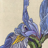 Detail of painted purple irises by Frances Coates