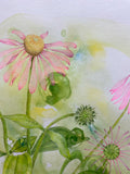 Detail of colored pencil drawing of pink coneflowers on green stems against a yellow and green watercolor background by Ann Currie at Cottage Curator - Sperryville VA Art Gallery