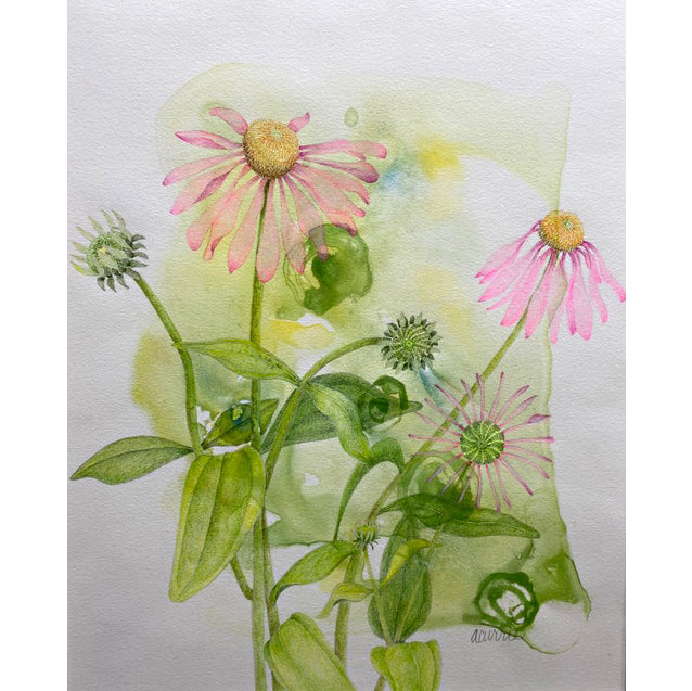 Colored pencil drawing of pink coneflowers on green stems against a yellow and green watercolor background by Ann Currie at Cottage Curator - Sperryville VA Art Gallery