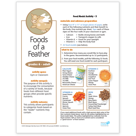 Food Model Activity 5-Foods of a Feather-Free Download