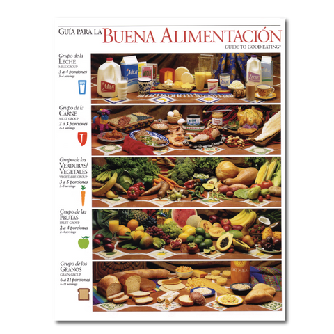 Guide to Good Eating Handout-Spanish-Free Download