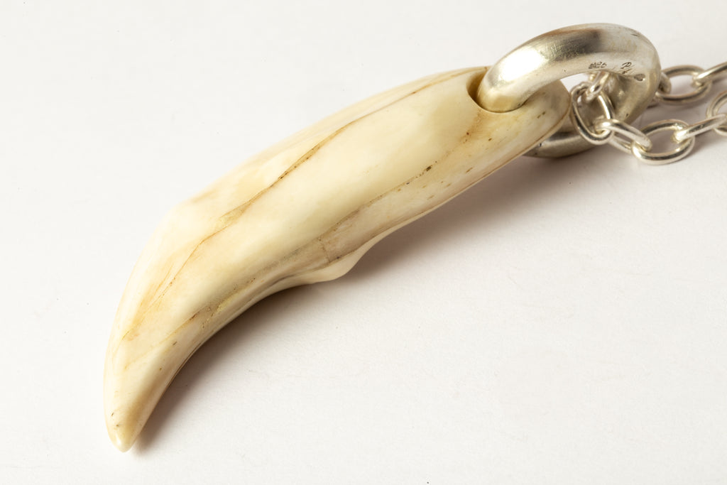 Bear Tooth Necklace Ghost (Large, B+MA)
