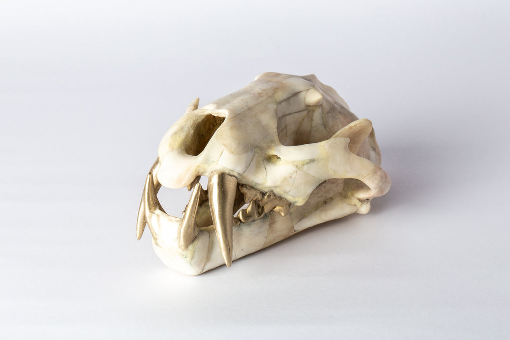 Sistema Ring (4-hole, 4mm, MA)