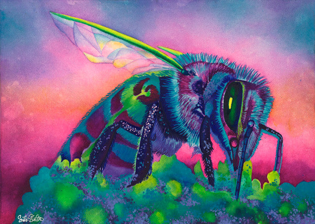 Blue Bee: Signed Print from original watercolor praying mantis painting.