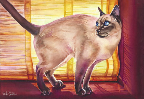 Bo: Signed Print from original watercolor cat painting.