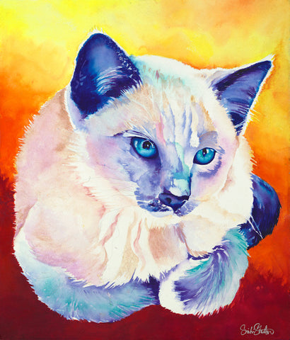Bruiser: Signed Print from original watercolor cat painting.