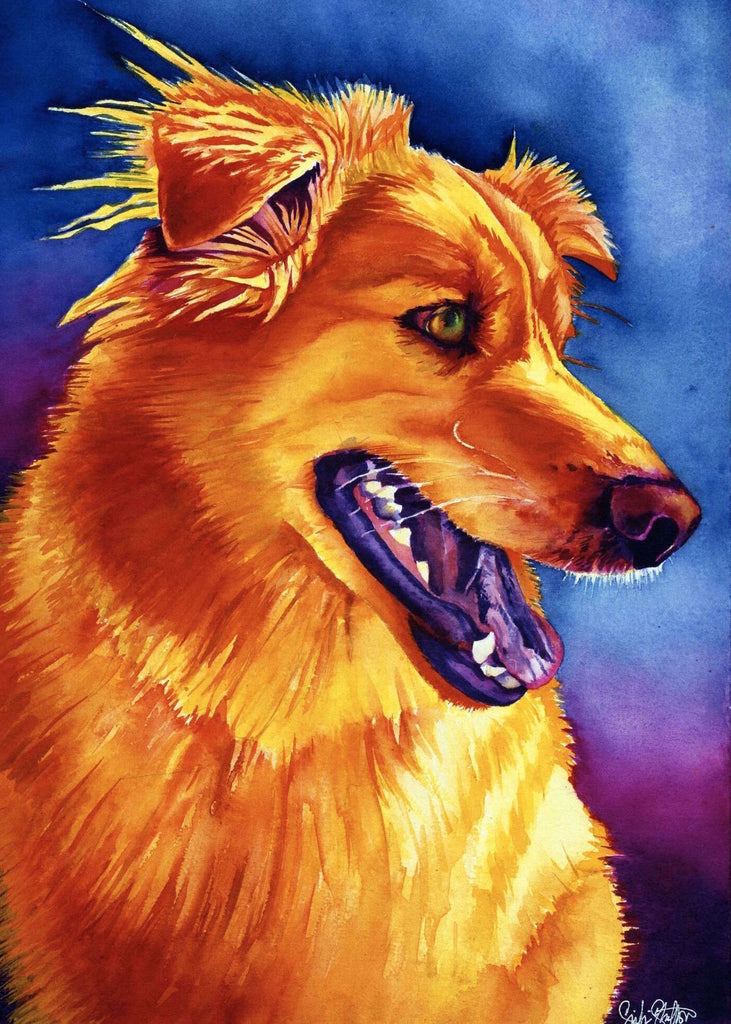 Chipper: Signed Print from original watercolor dog painting.