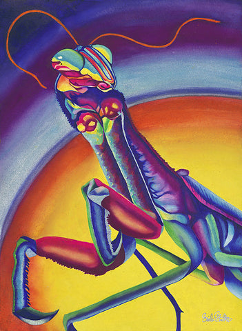 Emmy's Mantis: Signed Print from original watercolor praying mantis painting.