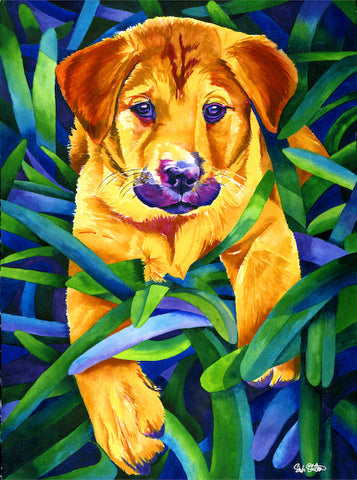 Harley: Signed Print from original watercolor shepherd puppy painting.