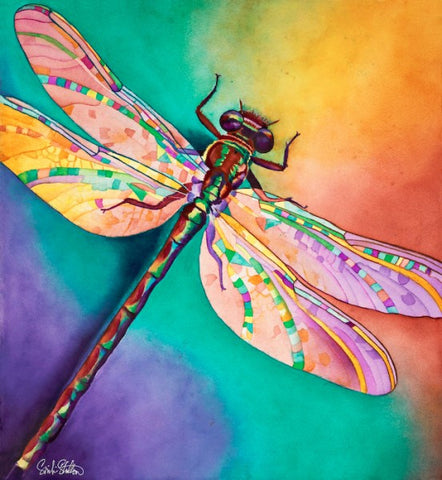 Illusion: Signed Print from original watercolor dragonfly painting.