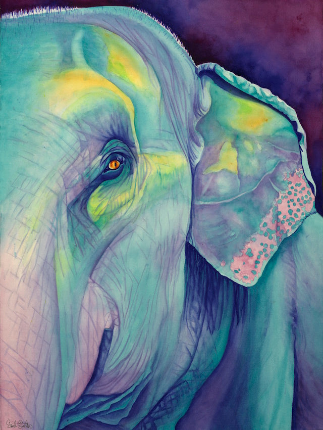 Lotus: Signed Print from original watercolor elephant painting.