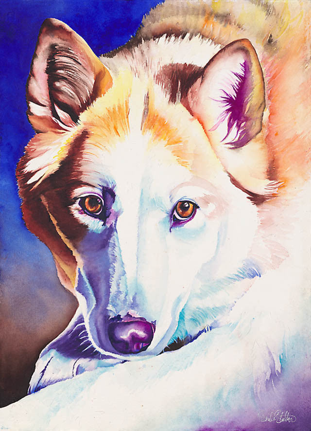 Wylie: Signed Print from original watercolor dog coyote painting.