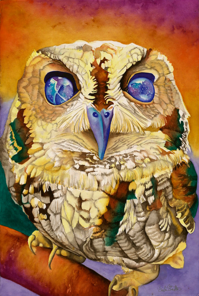 Zeus the Blind Owl: Signed Print from original watercolor owl painting.