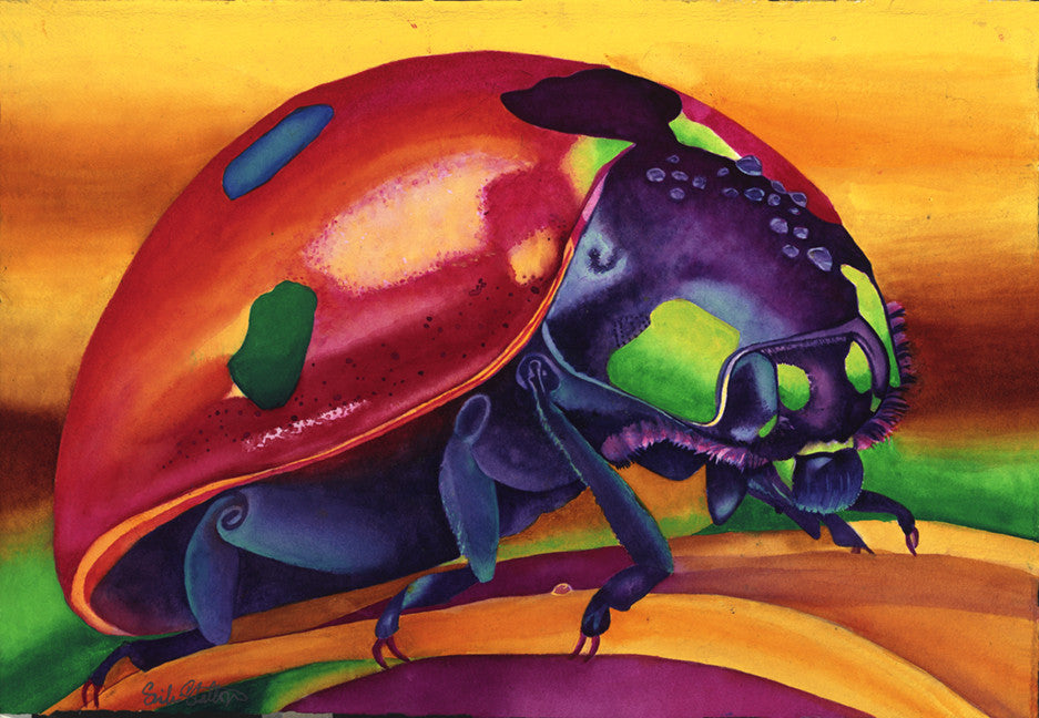 Lady Bug: Signed Print from original watercolor ladybug painting.