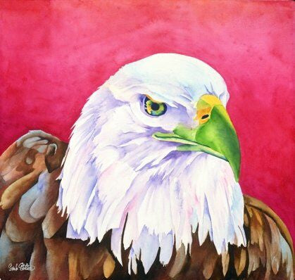 Focus: Signed Print from original watercolor bald eagle painting.